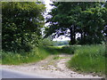 TM4178 : Field entrance off the B1124 Beccles Road by Adrian Cable