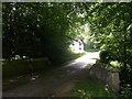 TQ4935 : Bridge on Buckhurst Park access road by David Anstiss