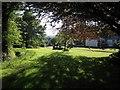 SX5390 : Green at Sourton by Derek Harper