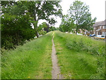 SY9287 : Wareham, Walls Walk by Mike Faherty
