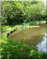SK5359 : Bleak Hills Area, Mansfield, Notts. by David Hallam-Jones