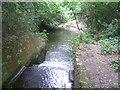 TQ6941 : Weir leading from Furnace Pond by Marathon