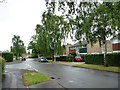 TL2513 : Windhill, Panshanger, Welwyn Garden City by Christine Johnstone