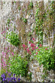 SN1508 : The outside of the walled garden wall by David Lally
