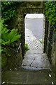 SN1508 : Gateway to the walled garden by David Lally