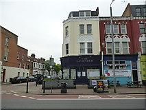 TQ2875 : Battersea:  The 'Lavender'  (dead) by Dr Neil Clifton