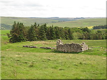 NY9398 : Ironhouse bastle, west of High Shaw (2) by Mike Quinn