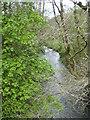 SX3476 : The River Inny below Wooda Bridge by Rod Allday