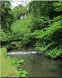 SK1258 : Weir and woodland in Beresford Dale by John Sutton