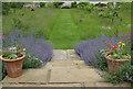 SE6779 : Cut walkway through wildflower meadow by Pauline E