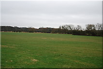 TL4311 : Grassland in the Stort Valley by N Chadwick