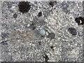 SN6608 : Ordnance Survey Rivet by Adrian Dust