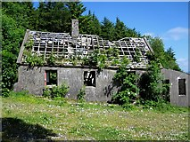 S2817 : Derelict Building by kevin higgins