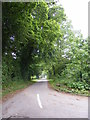 TM4781 : Wash Lane, Frostenden by Geographer