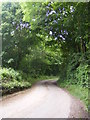 TM4780 : Kiln Road, Frostenden by Geographer