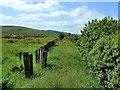 NX6068 : Loch Skerrow Halt by Mary and Angus Hogg