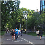 NT2572 : South on Middle Meadow Walk, west of George Square, Edinburgh by Robin Stott