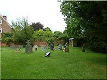 SU5355 : All Saints, Hannington: a verdant summer churchyard by Basher Eyre