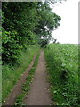 TL0234 : Bridleway to Wood Farm by Philip Jeffrey