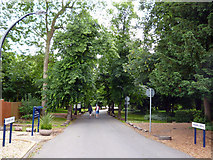 TQ2274 : Roehampton: Froebel Drive by Dr Neil Clifton