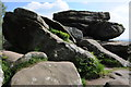 SE2064 : Rock outcrops, Brimham Rocks by Philip Halling
