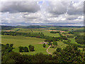 NU1515 : East Brizlee from the Long Stone, Hulne Park by Julian Paren