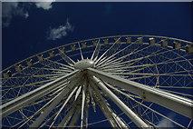 SJ3489 : The Liverpool Wheel by Fractal Angel