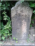 SE2333 : Marked Stone by Peter Wood