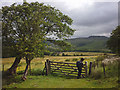 SD6447 : A gate above the Hodder Valley by Karl and Ali