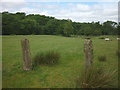 SD6544 : Stone gateposts near Lower Lees by Karl and Ali