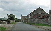 SE8067 : Middle Farm, Langton by Pauline E