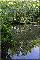 TQ3399 : Lake in the Woods at Forty Hall, Enfield by Christine Matthews