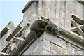 TF1765 : Grotesques, St Peter's church, Stixwould by J.Hannan-Briggs