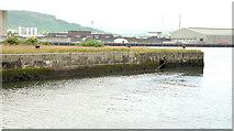 J3576 : Site for cruise ship terminal, Belfast (2013-1) by Albert Bridge