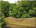 SX4259 : Remains of boat, Saltmill Creek by Derek Harper