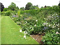 TQ4273 : Herbaceous border, Eltham Palace by David Hawgood