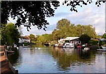 TG2608 : River Yare by Martin Brown