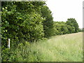 TM3783 : Footpath off the entrance of Rookery Farm by Adrian Cable