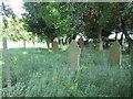 SE0935 : Graveyard - Lane Side by Betty Longbottom