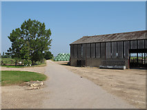 TL8605 : South House Farmyard, Maldon by Roger Jones