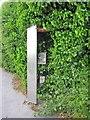 SN4801 : Green phone box by Richard Dorrell