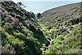 NT2233 : Clinty Burn gully, Glenrath Hill by Jim Barton