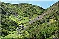 NT2233 : Near the top of Clinty Burn gully by Jim Barton