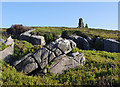 SD5460 : Gritstone outcrop below Clougha Pike by Ian Taylor
