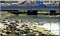J3675 : The Connswater, Victoria Park, Belfast (2013-2) by Albert Bridge