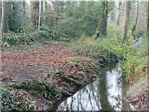 N9734 : Crodaun Stream coming from Crodaun Forest alongside Castletown House by jwd