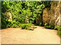 NZ0878 : Quarry Garden, Belsay Castle by David Dixon