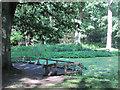 SP9713 : The co,pleted platform on Clickmere Pond, Ashridge (June 2010) by Chris Reynolds