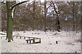 SP9713 : Snow blankets everything at Clickmere Pond, Ashridge (Boxing Day, 2010) by Chris Reynolds
