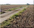 TF5623 : Farm track to Horseshoe Hole by Mat Fascione